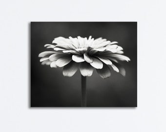 "Black and White Flower Canvas Photography - dark grey gray gallery wrapped canvas nature botanical wall print modern floral, ""Spellbinding"""