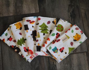 Cloth Wipes Set of 6