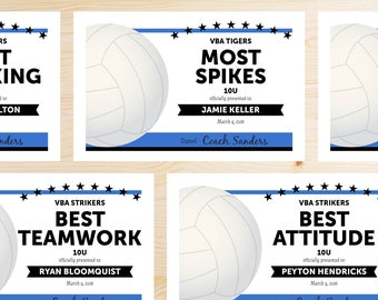 Volleyball awards etsy editable volleyball award certificates instant download printable black and blue yadclub Gallery