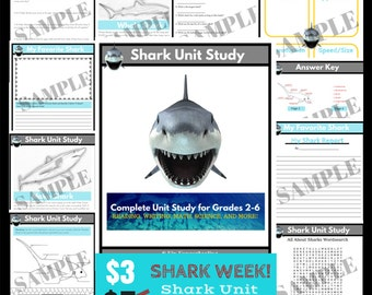 Shark Unit Study - Grades 2 to 6 - Homeschool Curriculum - Instant Download - Homeschool Lesson - Shark Study Unit - Printable PDF
