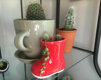 Miniature succulent garden in rain boot planter