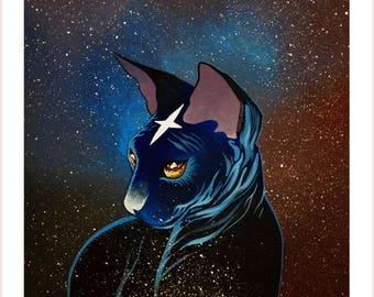 Cosmos cat