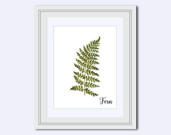 fern leaf print - fern print - Modern wall art - leaf Wall Art - Printable Art - leaf decor - wall art printable - printable wall decor