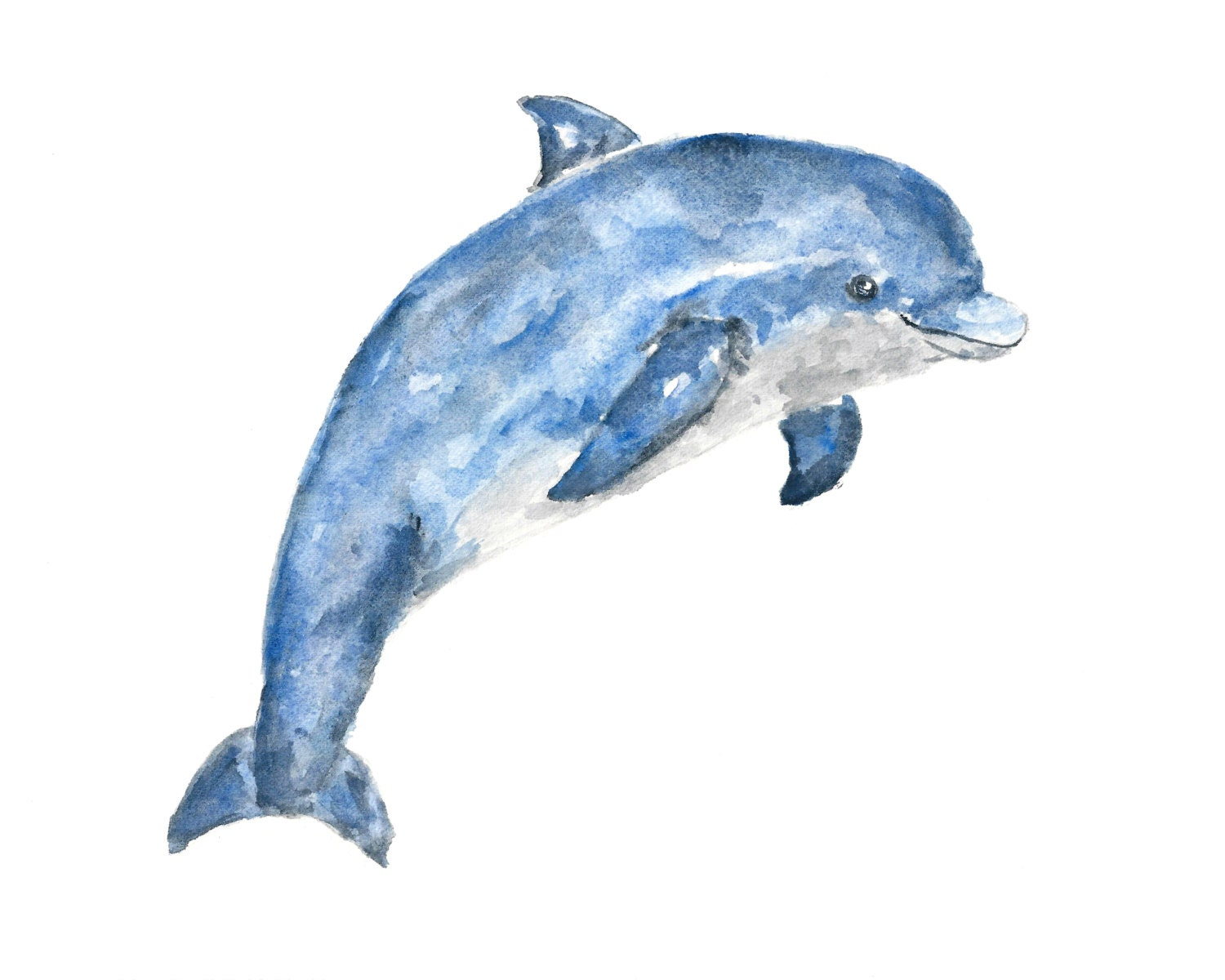 Uncategorized Dolphin Images To Print animal art watercolor animals dolphin beach