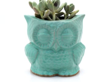 Owl planter for succulents, Ceramic planters, handmade owl decor, ceramic plant pots, indoor planters, desk plants, housewarming gift