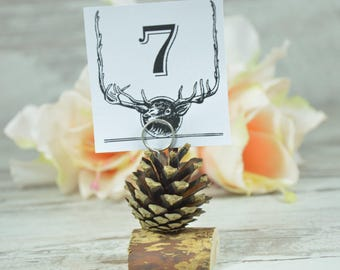 WEDDING PINECONE Escoed Cards Rustic Set of 14 Woodland Wedding Place Cards, Table Numbers, Rustic, Country,