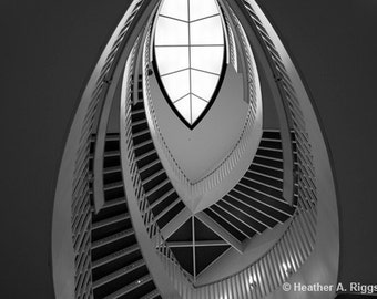 Stairs, Black and white, Ellipse, staircase, oval, pattern, curve, abstract, photograph