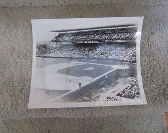 Wrigley Field Photograph 8x10
