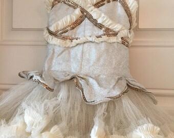 Antique Childs Ballet Costume