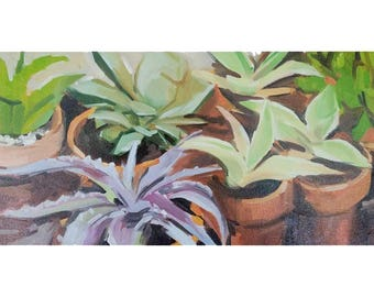 "Succulents 6""x12"" original oil painting"