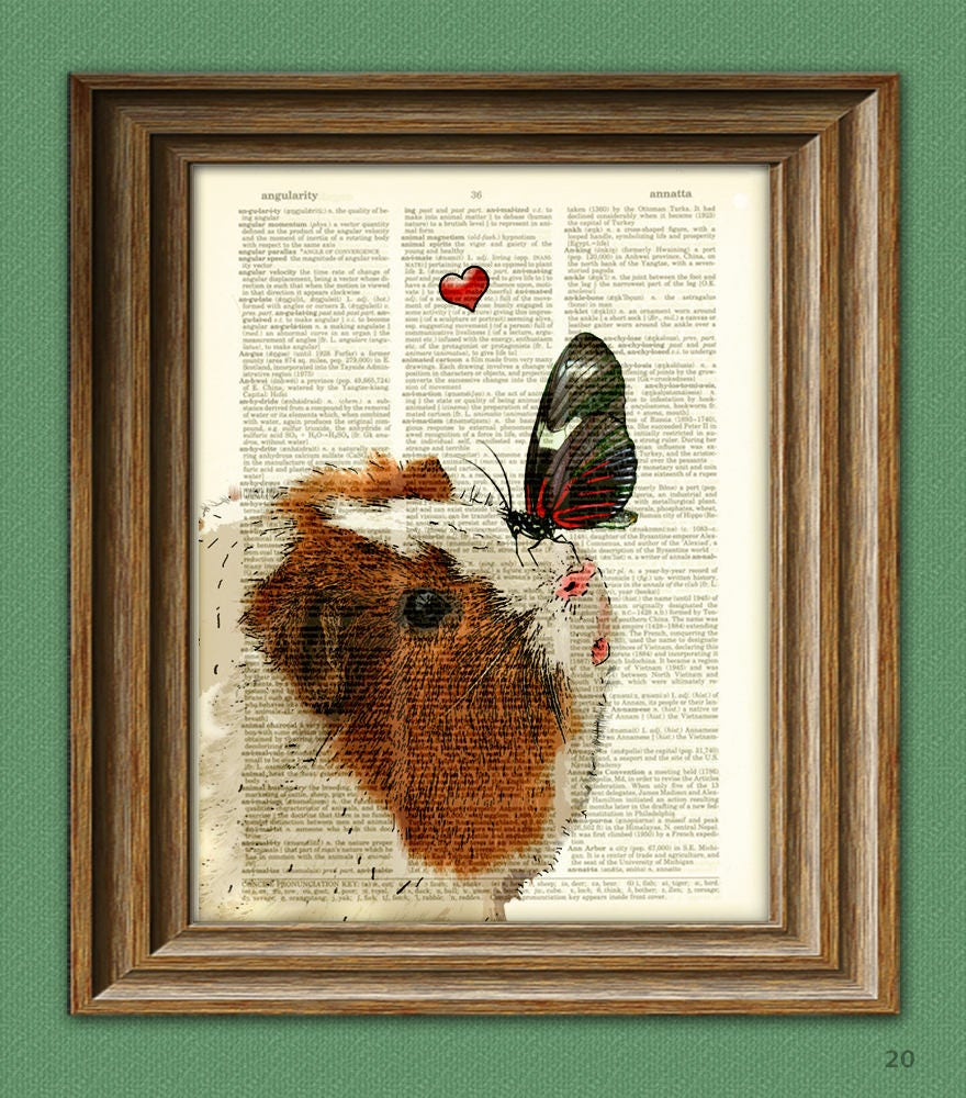 Winnie makes a new friend guinea pig with butterfly art print zoom jeuxipadfo Gallery