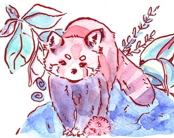 Red Panda IV Art Print