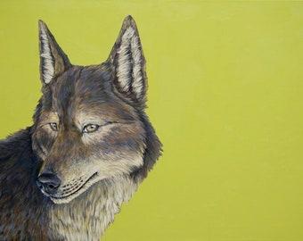 Canis Lupus canvas print