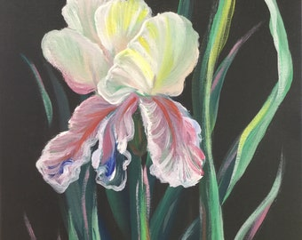 Iris Flower, Original Acrylic Painting on Canvas, Floral Artwork of Iris Flower on Black Background, signed and Ready to Hang.