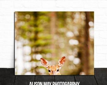 Rustic decor, rustic photo, deer antler photo, deer antler print, man cave decor, antlers photo, antlers print, deer photo, hunter gift