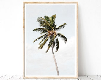 Palm Tree Templates Icard Ibaldo Co