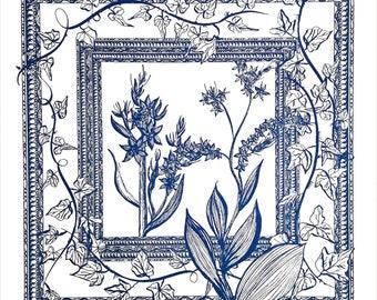 Veratrum viride, common name:false hellebore. A saturnalian herb.  Saturn rules #Capricorn & was the ancient ruler of #Aquarius.