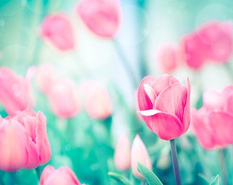 tulips photography flower nature photography floral 8x10 24x36 fine art photography spring wall art pink tulips aqua mint teal nursery decor