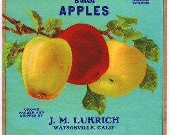Vintage Apple Label PDF Cross Stitch Pattern