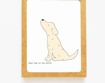 Yellow Lab Boxed Notes