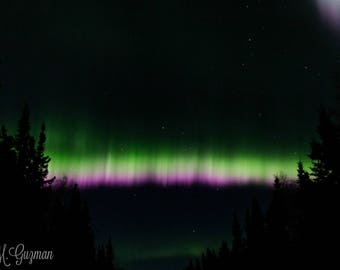 Alaska Northern Lights / Aurora Borealis