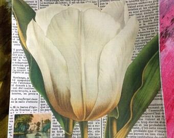 "Decoupage Glass Mini Tray ""White Tulip"""