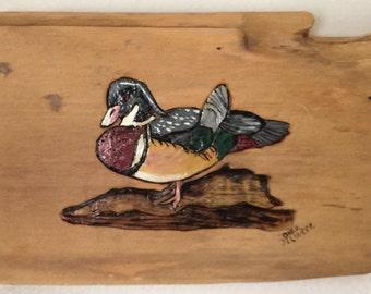 Duck Decoy 1
