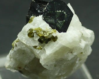 Phlogopite Mica with Olivine, Russia  - Mineral Specimen for Sale