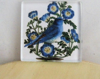 Spring decor, Easter decorations, refrigerator magnets, home decor, housewarming gift, Mother's day gift, Bluebird decor