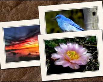 3 Nature Photo Greeting Cards Handmade Set - 5x7 Nature Note Card - Blank Note Cards Handmade - Nature Blank Greeting Cards Handmade (NA13)