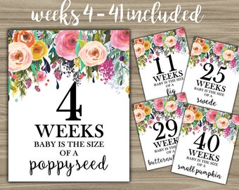 Weekly Pregnancy Signs - INSTANT DOWNLOAD - Pregnancy Weeks Photo Prop Baby Is Size Of A - Baby Shower Floral Pregnant Sign Weeks 4-41 - L08