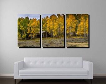 House in The Aspens, Triptych Gallery Wrapped Canvas, Colorado Art, Colorado Print, Colorado Photography