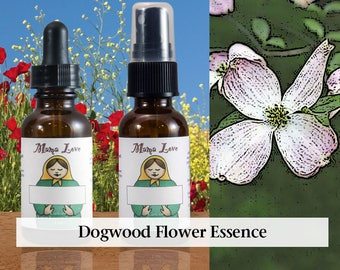 Dogwood Flower Essence, 1 oz Dropper or Spray for Grace and Ease, a Better Relationship with Your Body and Physical Life