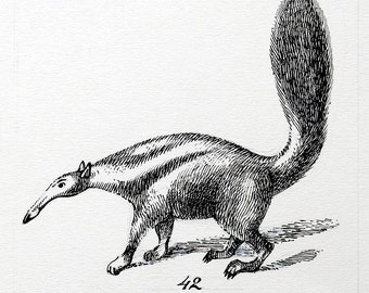 Anteater original ink drawing
