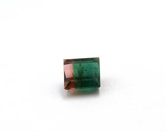 Pink Green Watermelon Bicolor Tourmaline Faceted Gemstone 2.5 ct 7.1x7.7x4.7 mm Free Shipping