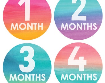 Gender Neutral Baby Monthly Stickers - Watercolor Monthly Stickers - Months 1-12, beach stickers