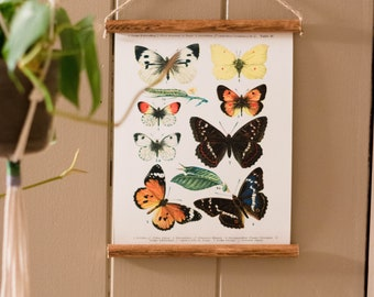 Mini Poster | Butterfly Print