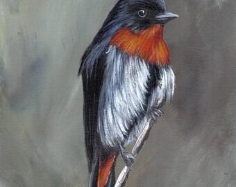 Bird Art - Bird Painting - Mistletoebird - SFA- Original Wildlife Acrylic Painting - Bird Lover Gift - Australian Bird wildlife