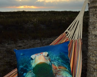 Turtle,Cushions, Great Barrier Reef
