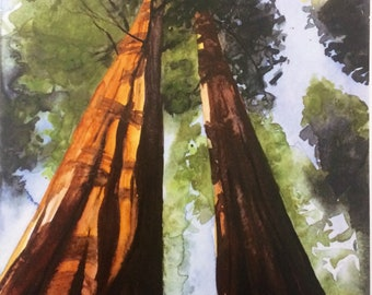 Sequoia watercolor, sequoia print, sequoia national park, Yosemite, watercolor trees, tall trees, Watercolor print, Tree painting print