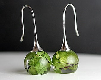 Real leaf earrings. Maidenhair fern in resin spheres. Silver earwires. Big earrings. Gift for her.