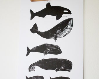 Poster Whales