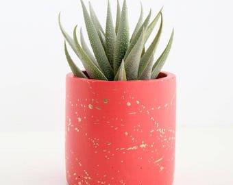 Gold splatter cement planters - choose your colors