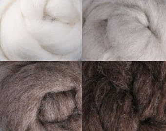 Natural Undyed Corriedale Wool Collection Four Ounces Four Colors for Felting or Spinning