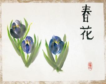 Crocus Spring Blossom / Chinese Brush Painting