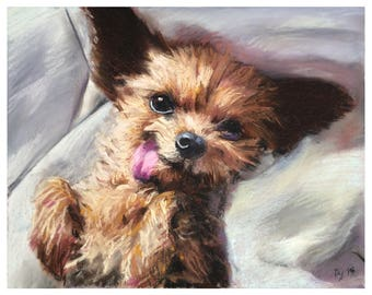 Custom Pet Portrait - Commission - Chalk Pastel