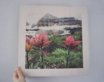 Wood print Timpanogos 15x15