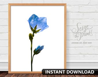BLUEBELL FLOWER ART - Bluebell Flower Print, Floral Art, Floral Print, Printable, Office Decor, Hotel Decor, Blue Wall Art, Instant Download