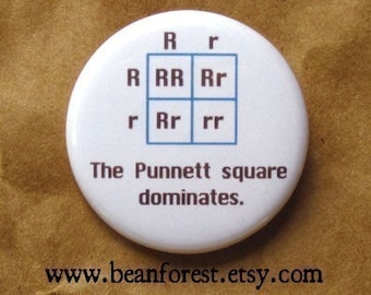 the Punnett square dominates - dna gift genetics pin pinback button badge scientist genes