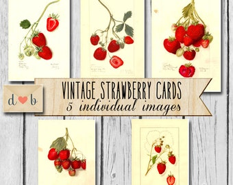 Digital Download - Vintage STRAWBERRY LOVE -  5 individual images - 3x4 inch Cards